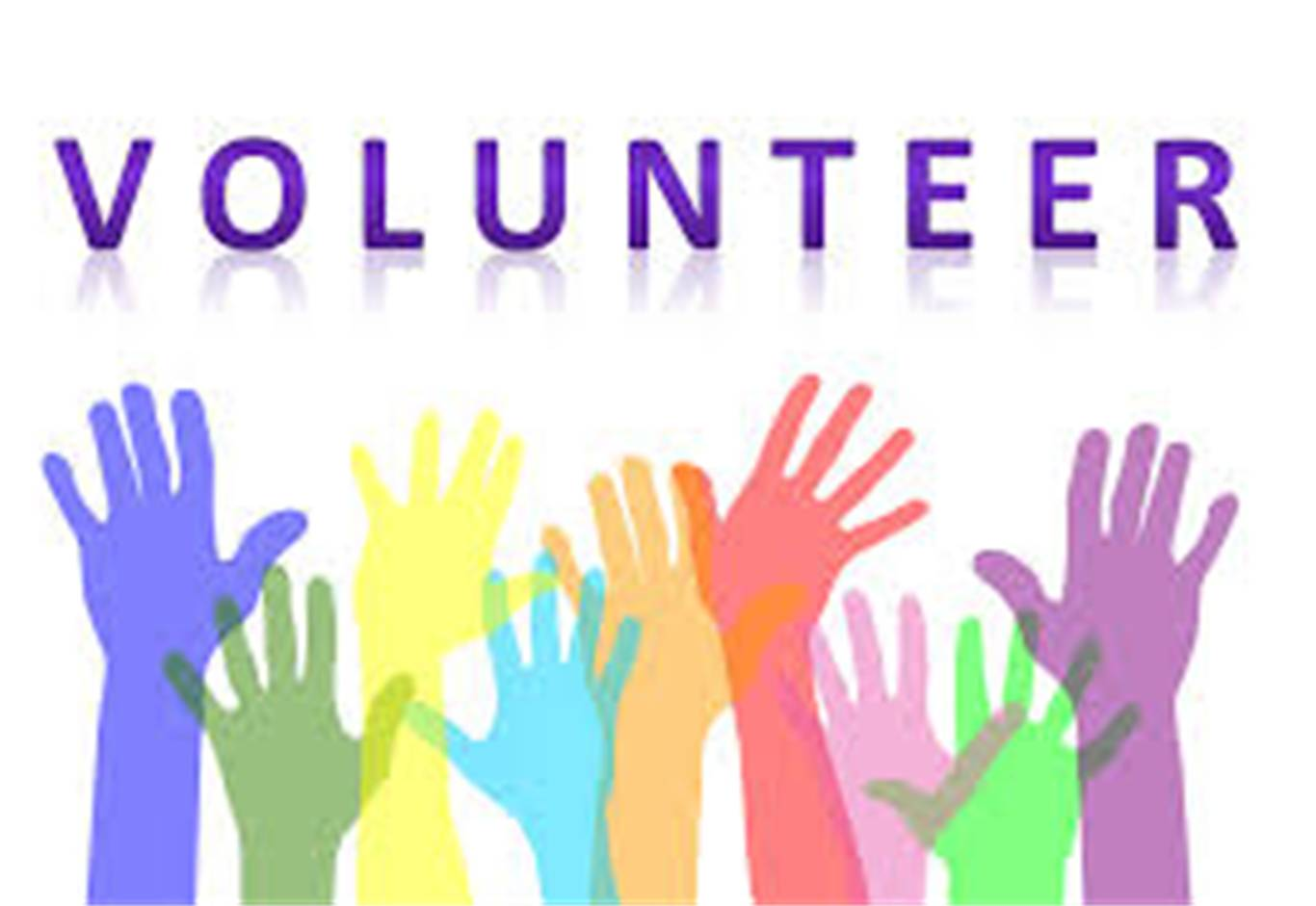 Volunteer Opportunities at OLMC